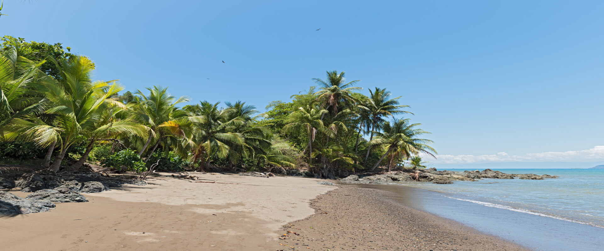 Day Trip Corcovado National Park San Pedrillo Station | Costa Rica Jade Tours