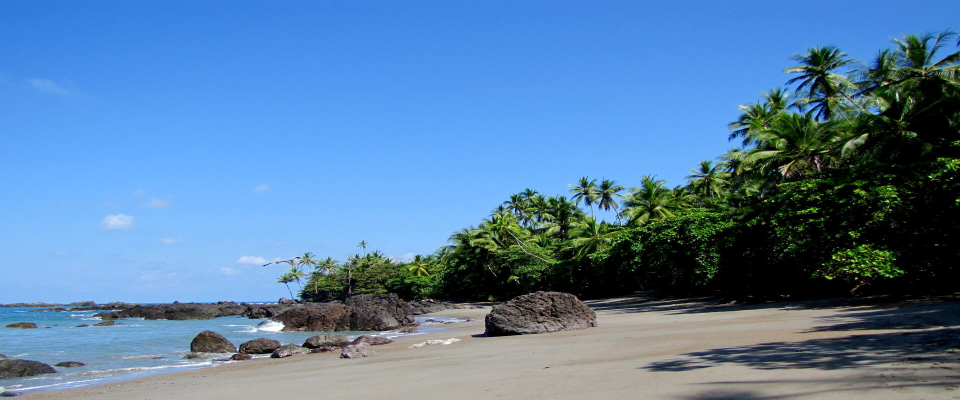 Day Trip Corcovado National Park Sirena Station | Costa Rica Jade Tours