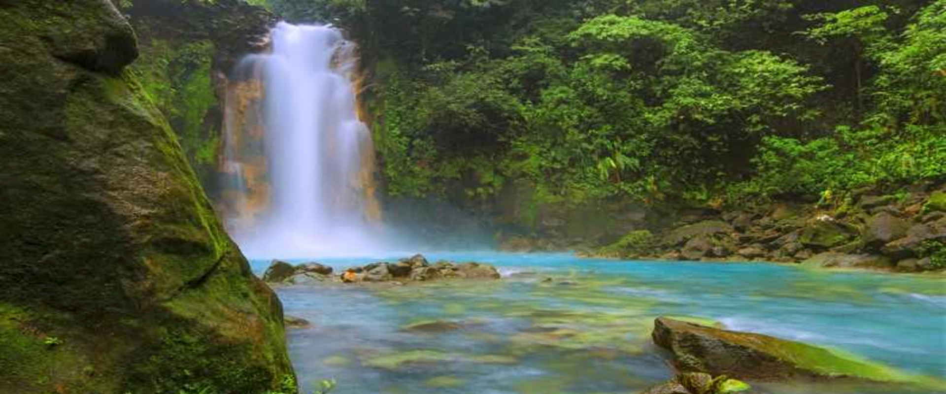 Río Celeste and Tenorio Volcano Guided Rainforest Hike  | Costa Rica Jade Tours