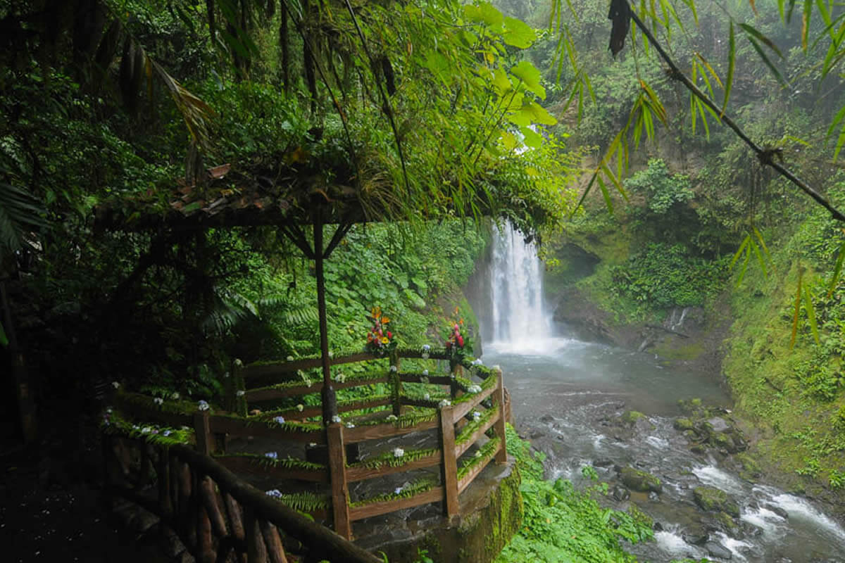 Coffee And Waterfalls Tour Costa Rica Jade Tours