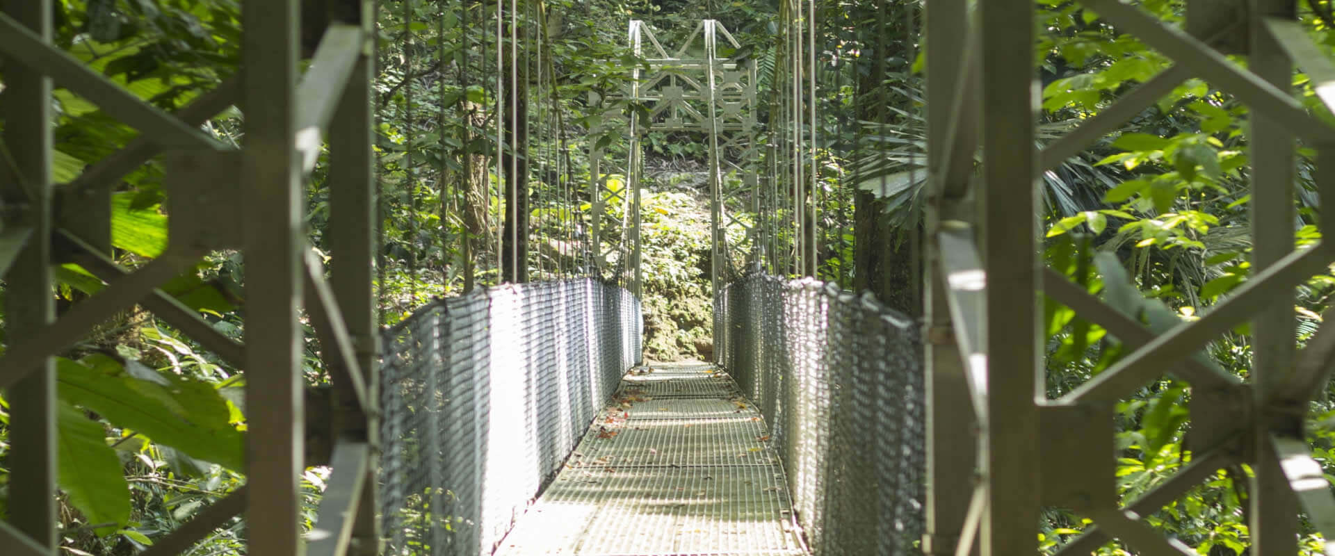 Hanging Bridges, La Fortuna, Costa Rica