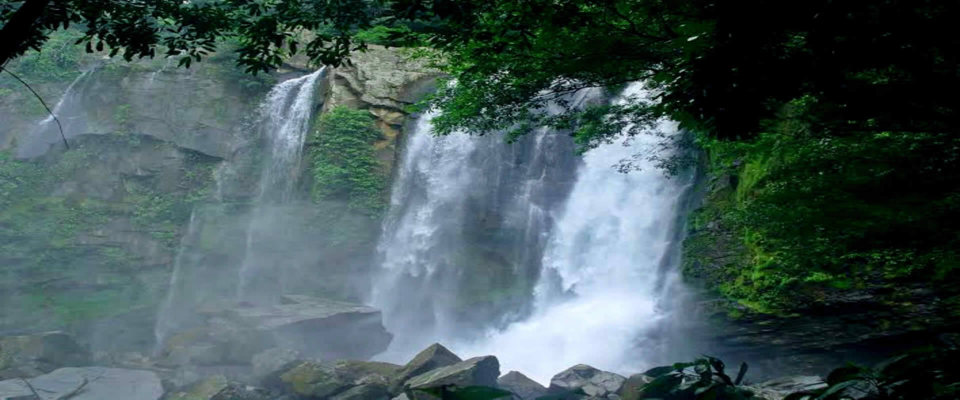 Nauyaca Waterfalls Tour