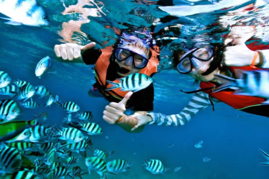 Snorkelling tour Caño Island